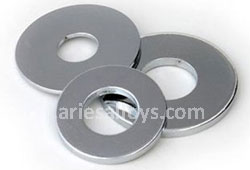 Hastelloy Flat Washers Dealer In India