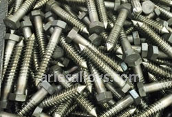 Hastelloy Lag Bolt Manufacturer In India
