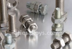 Titanium GR 5 Nuts Price in India